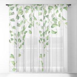 Golden Pothos - Ivy Sheer Curtain