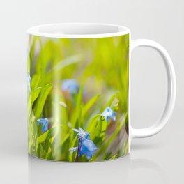 Scilla siberica flowerets named wood squill Coffee Mug