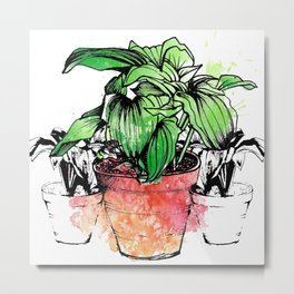 Green Leaves in the red Plant Pot Metal Print