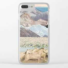 Washes Clear iPhone Case