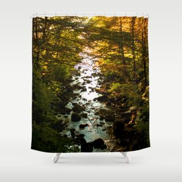 The Salmon's End Shower Curtain
