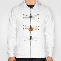 dragonfly collector Hoody