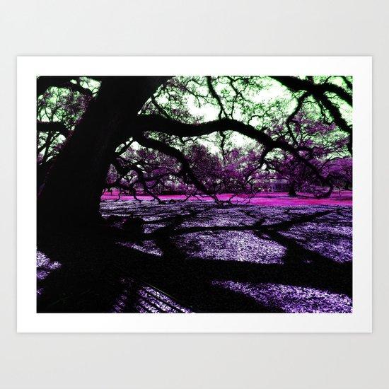 Oak Shadows Pink Art Print