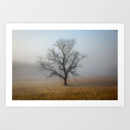 In a Fog - Single Tree on Foggy Morning in the Great Smoky Mountains Art Print