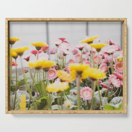 Gerber Daisies in Strawberry Lemonade  |  The Fresh Flower Collection Serving Tray