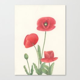 Poppies in Red Canvas Print