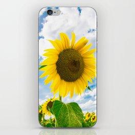 Heart of Tuscany iPhone Skin