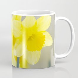 Four yellow narcissus flowers Coffee Mug