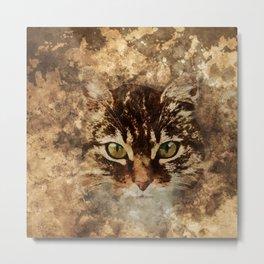 Dirty cat Metal Print