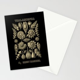 """""""Thalamorpha"""" from """"Art Forms of Nature"""" by Ernst Haeckel Stationery Cards"""