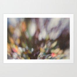 Winter Bokeh Art Print