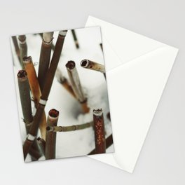 Snowy Reeds on the River Bank Stationery Cards
