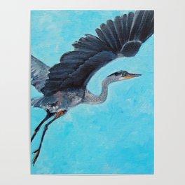 In Flight Blue Heron Painting Poster