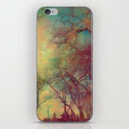 Tree Silhouette, Autumn Sunset iPhone Skin