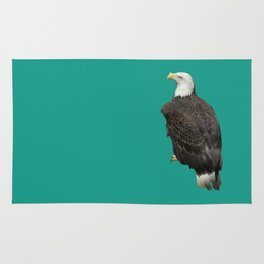 Life's a Zoo - in Eagle Rug