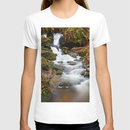 Falls In The Fall T-shirt