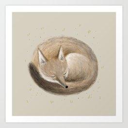 Swift Fox Sleeping Art Print
