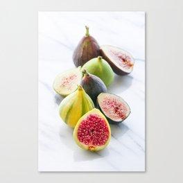Four Figs Canvas Print