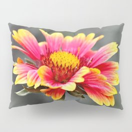 Sun in Bloom Pillow Sham