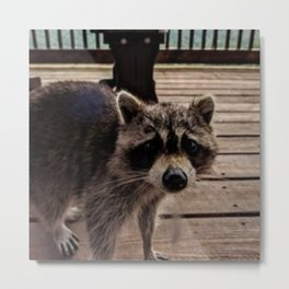 little fella Metal Print