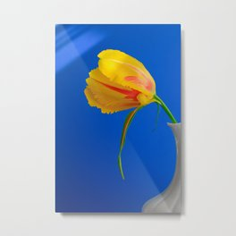 Yellow French Tulip on Blue Background Metal Print