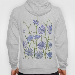 blue chicory watercolor Hoody
