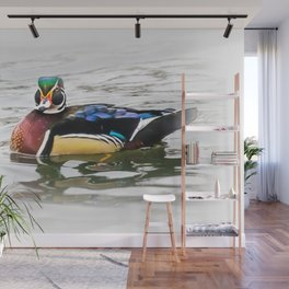 Wood Duck Two Wall Mural