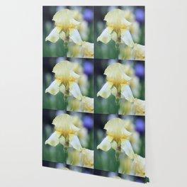 Yellow Iris Wallpaper