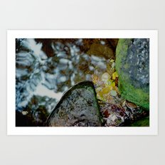 untitled#11 Art Print