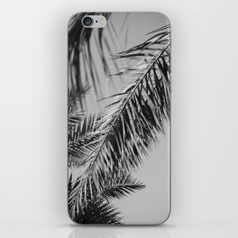 Fronds against the sky black and white iPhone Skin