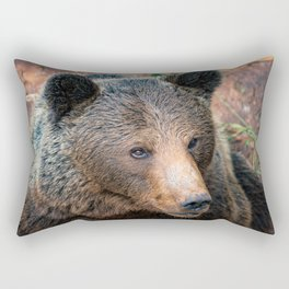 Grizzly Bear Rectangular Pillow