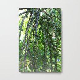 Sugar Palm- vertical Metal Print