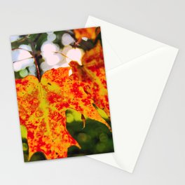 Autumn Joy Stationery Cards