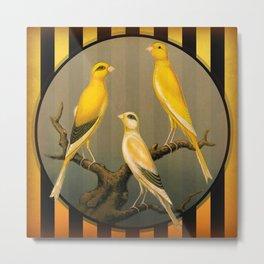 Vintage Canaries Metal Print