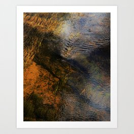 Stream Bed Reflections Art Print