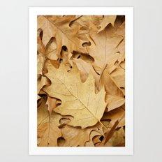 Brown fallen leaves Art Print