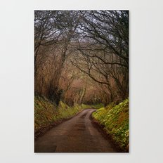 country way Canvas Print
