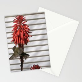 small bird in the country style white wood red flower Stationery Cards