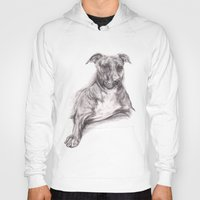 pit bull Hoodies featuring Pit Bull Portrait in Charcoal by M.M. Anderson Designs