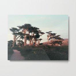 Setting Sun on the Trees Metal Print
