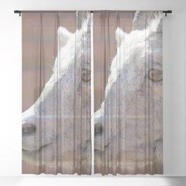 Watercolor Bighorn Sheep Ewe Sheer Curtain