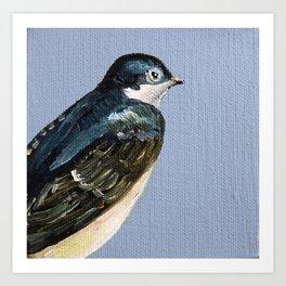 Eastern Songbird Series - Swallow Art Print