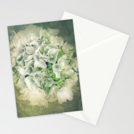 Lace Cap Hydrangea  Stationery Cards