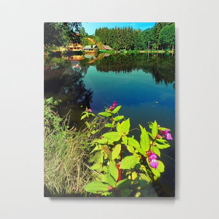 End of summer at the pond Metal Print