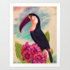 Mr. Toucan Art Print