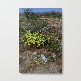 Painted_Desert 7271 - Johnson_Valley, California Metal Print