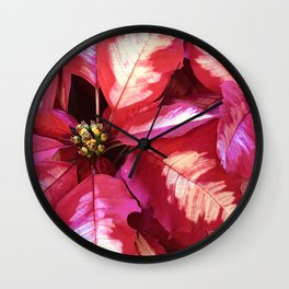 Vibrant Red Pink Christmas Holiday Poinsettia Leaves Wall Clock