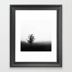 Alone in the Fog Framed Art Print
