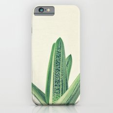 Cactus III Slim Case iPhone 6s