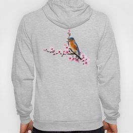 Eastern Bluebird and Cherry Blossom Hoody